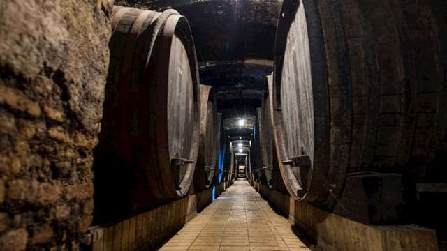 Visit and wine tasting in the Vinag Wine Cellar