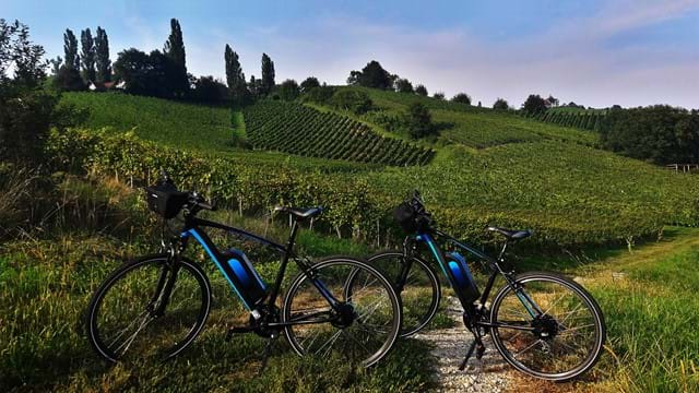 WineBike - E-Bike Verleih
